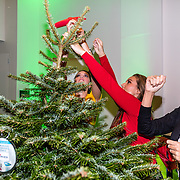 NLD/Amsterdam/20161207 - 8e Sky Radio's Christmas Tree For Charity, Daphne Deckers