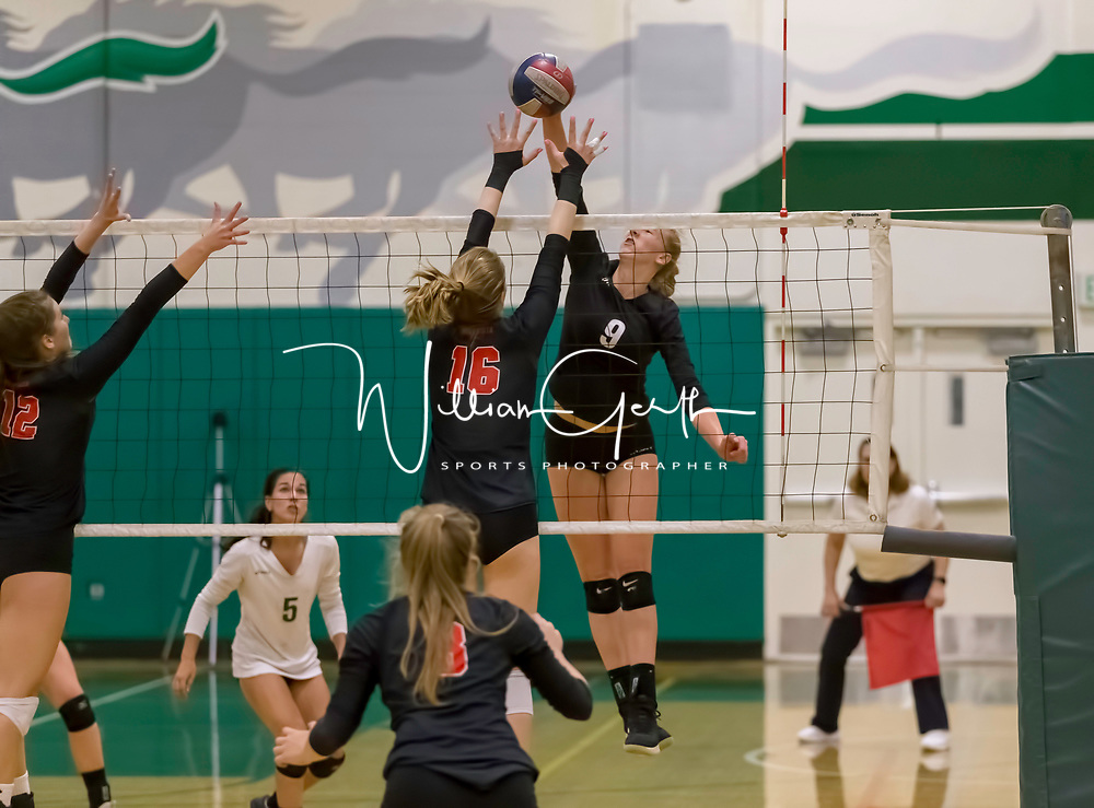 Homestead Girls Volleyball #9 Paige Bensing vs Monta Vista-Danville in the CIF Division II Northern regional tournament at Homestead High School, Cupertino CA on 11/6/18. (Photograph by Bill Gerth)(Homestead 3 Monta Vista-Danville 1)