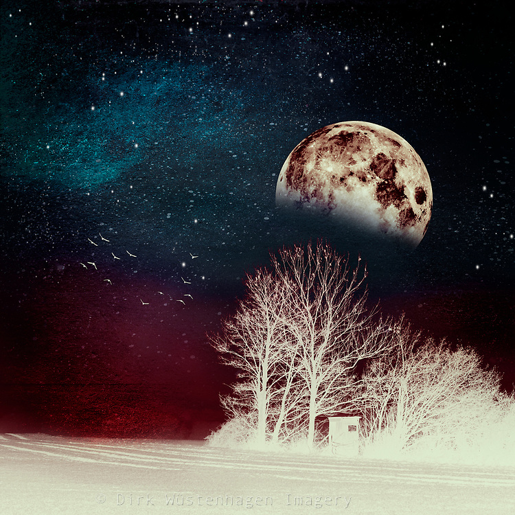 Inverted landscape with full moon at night<br /> Redbubble: https://rdbl.co/2Hc60Qw<br /> Society6: https://bit.ly/2qIEeFd