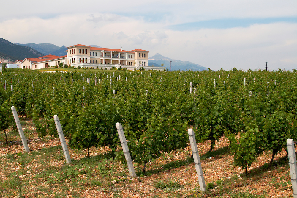 Vineyard. Winery building. Biblia Chora Winery, Kokkinohori, Kavala, Macedonia, Greece