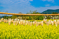 April 12, 2018 - Huangshan, Huangshan, China - Huangshan, CHINA-12th April 2018: Scenery of Xidi Ancient Village in Huangshan, east China's Anhui Province. (Credit Image: © SIPA Asia via ZUMA Wire)