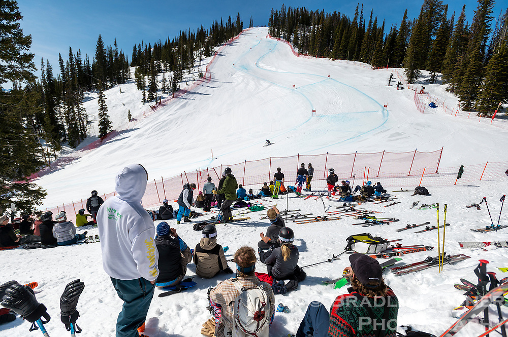 Spectators watch the action of the Jackson Hole Downhill at the midway section of the course Sunday at Jackson Hole Mountain Resort.
