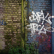A decaying Victorian brick wall and present-day graffiti in London's east end. After decades of grime and dirty air, a drain pipe has turned green from leaking water and moss and algae has been allowed to accumulate on brickwork and weeds to grow upwards to make this a scene of urban dereliction and decay.
