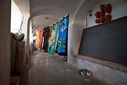 Siamo in Puglia, a Specchia cittadina della provincia di Lecce, situato a circa 60 Km a sud del capoluogo di provincia..Si presenta come un paese tranquillo ma vivo..Le strade luminose e pulite presentano una pavimentazione a lastroni antichi..Il centro storico è un'area pedonale ed è spesso scenario di manifestazioni sacre e culturali..La gente è gentile ed ospitale e si è lasciata fotografare con tranquillità, facendosi riprendere nel loro fare quotidiano, quasi fosse abituata ad essere fotografata..Quest'area del Salento è meta di un turismo alla ricerca della tranquillità e della cultura; cultura intesa anche come eno-gastronomia, e soprattutto cultura volta al rispetto della natura..I turisti in cerca di aria sana, pulita, vengono nei paesini dell'entroterra salentino, lontani dalla città e dallo smog...Queste foto sono state scattate nel Borgo di Cardigliano, una frazione di Specchia, in passato conosciuto come il paese fantasma del Salento è oggi divenuto un Resort, che in tutte le stagioni è frequentato da turisti e famiglie che si rifuggiamo nella tranquilla e sperduta borgata...Le abitazioni più antiche sono di colore rosso intenso, tendente al bordeaux, gli intonaci invecchiati e i calcinacci screpolati sono una delizia per gli occhi che si soffermano ad osservare le figure create dal caso sulle pareti...