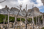 Los Cuernos (The Horns), in the French Valley, Torres del Paine National Park, Ultima Esperanza Province, Chile, Patagonia, South America. The Park is listed as a World Biosphere Reserve by UNESCO.