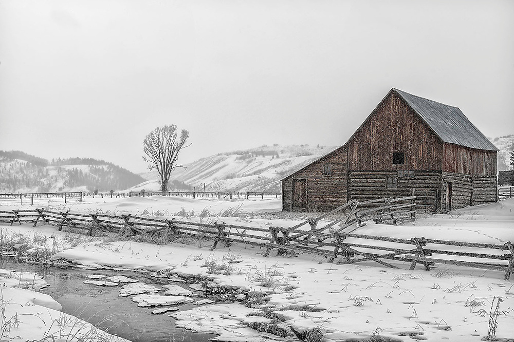 A wintery tree and barn along Spring Gulch Road in Jackson, Wyoming.
