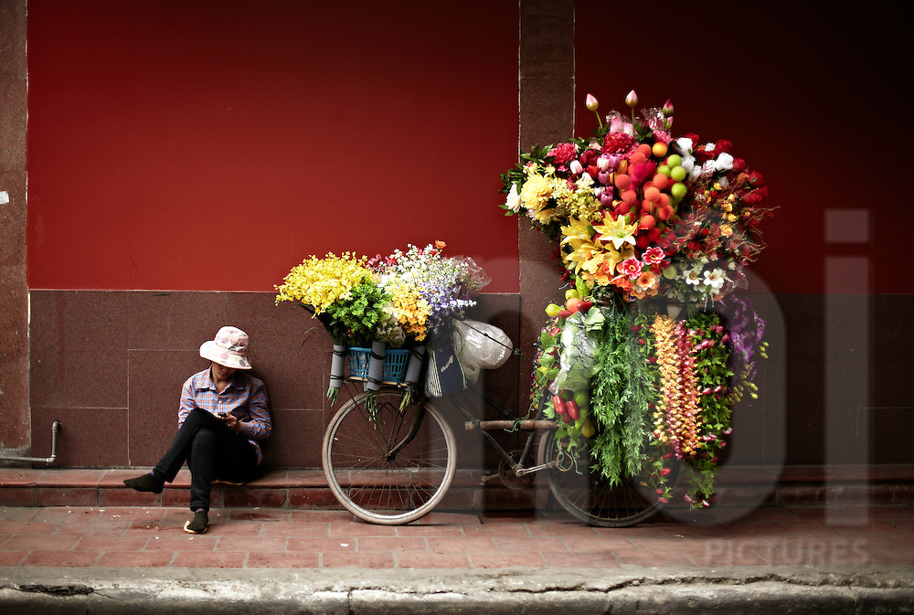 Woman sits beside her bicycle overloaded with fake flowers, Vietnam, Southeast Asia