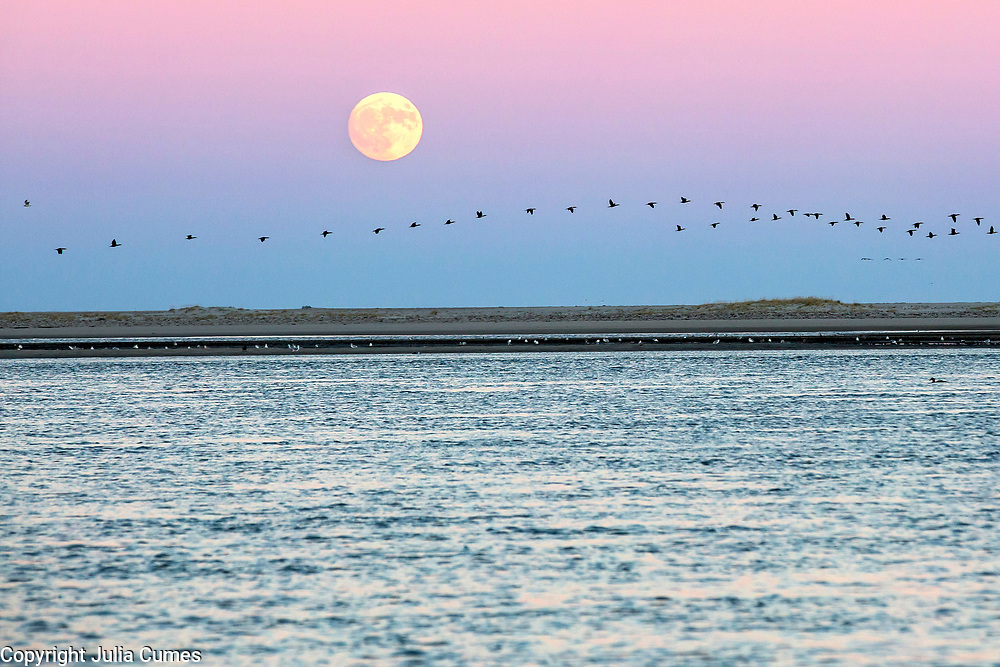 The supermoon sets over Chatham's Lighthouse Beach on Cape Cod.