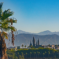 A palm tree rises in front of Universal Studios theme park in Studio City, California.  The San Gabriel Mountains are in the background.