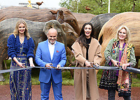 Donna Air, Sergio Momo, Amy Jackson and Joanna Lumley  taking part The Elephant Family's CoExistence campaign  exhibition featuring elephant sculptures crossing The Mall  london  May 15, 2021photo by Krisztian  Elek