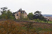 vineyard  chateau rayne vigneau sauternes bordeaux france