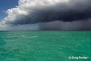 summer rain squall approaches over mangrove cays, Little Bahama Bank, near Sandy Point, Great Abaco, Abaco Islands, Bahamas ( Western Atlantic Ocean )