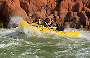 River Runners on the Colorado River