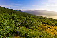 View from Cadillac Mountain, Acadia National Park, Mount Desert Island, Maine, USA