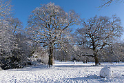 Winter scene in the snow in Highbury Park in Kings Heath on 25th January 2021 in Birmingham, United Kingdom. Deep snow arrived in the Midlands giving some light relief and fun during the current lockdown for people who simply enjoyed the weather.