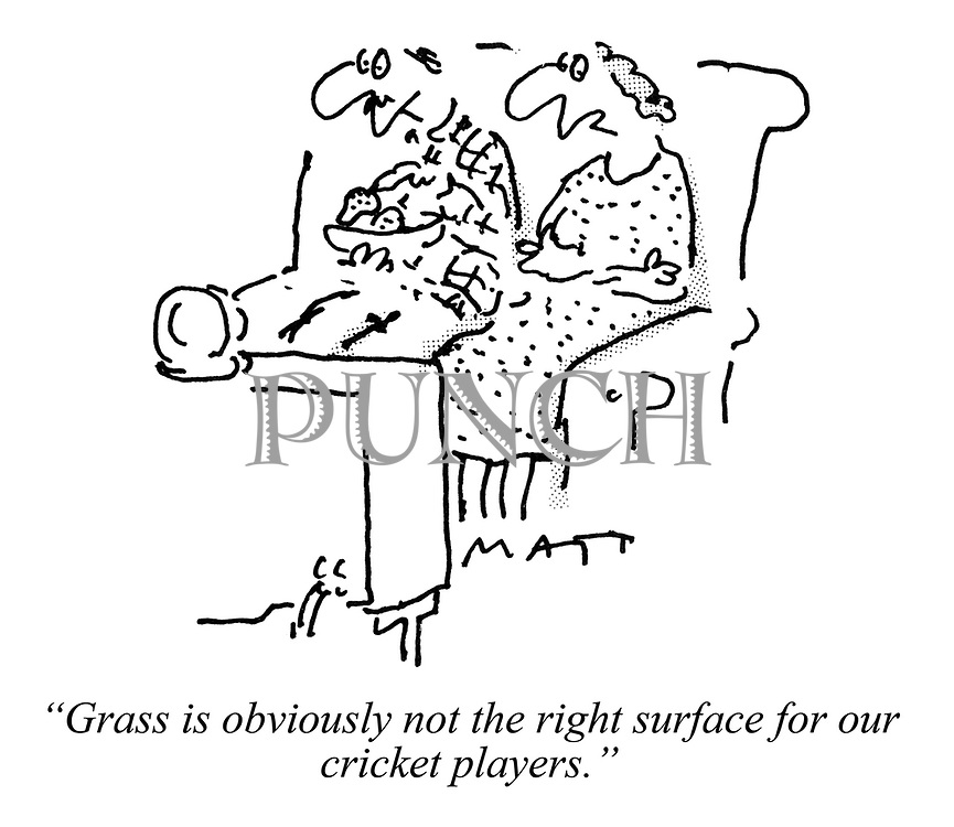 """Grass is obviously not the right surface for our cricket players."""