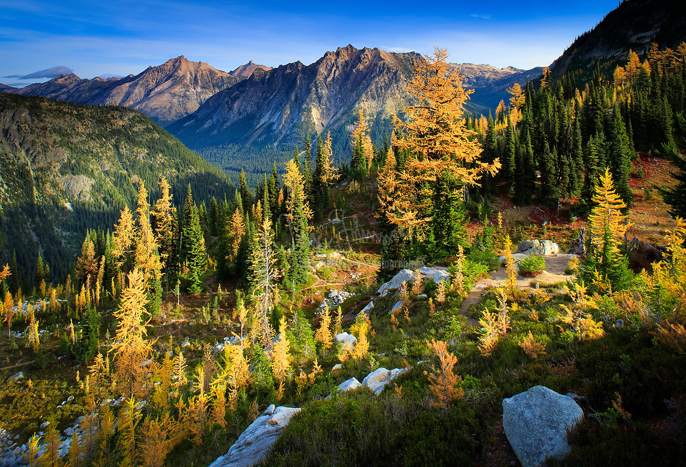 Heather Pass, along Maple PAss / Lake Ann trail in the North Cascades National Park.