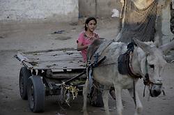 October 23, 2016 - Beit Lahiya, The Gaza Strip, Palestine - Palestinian girl on a cart at Beit Lahiya city northern the Gaza Strip. (Credit Image: © Mosa Ghaben/Quds Net News via ZUMA Wire)