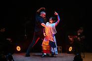 flamenco_feb2019