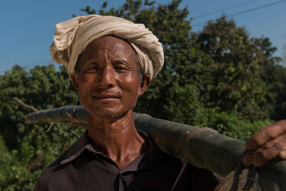Mising man carrying bamboo<br /> Mising Tribe (Mishing or Miri Tribe)<br /> Majuli Island, Brahmaputra River<br /> Largest river island in India<br /> Assam,  ne India