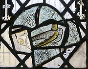 Detail of small bird medieval stained glass window roundel inside the church at South Elmham All Saints, Suffolk, England, UK