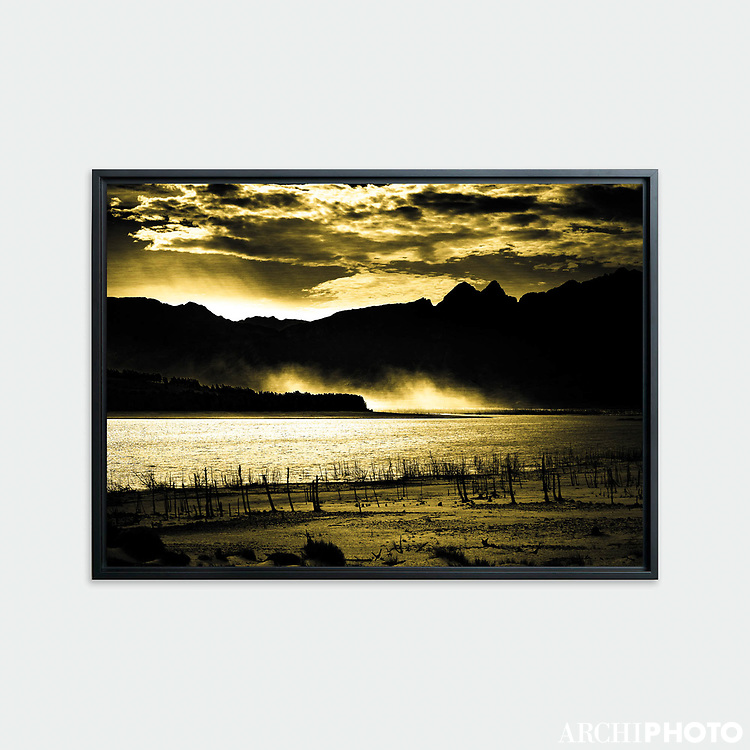 Theewaters Nature Reserve, South Africa • Original photographic work by Antoine Duhamel • Direct print on brushed brass.