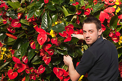 © Licensed to London News Pictures. 02/02/2012. London, England.  Royal Botanic Gardens at Kew celebrate the Tropical Extravaganza Festival 2012 with more than 6,500 tropical plants. The festival runs from 4 February to 4 March 2012. In this picture: Joe Robins, Horticulturalist. Photo credit: Bettina Strenske/LNP