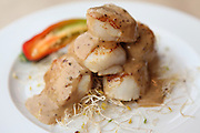 A plate of coquilles saint jacques Scallop