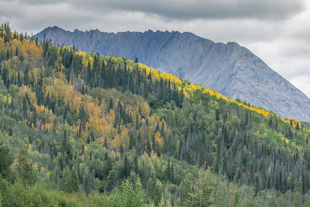 in the Tatshenshini-Alsek Provincial Park in British Columbia, Canada on September 11, 2016.