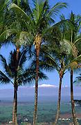 Hilo, Snow capped Mauna Kea, Island of Hawaii<br />