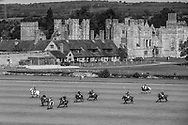 A polo match in play on the River Ground at Cowdray Park Polo Club, Midhurst, West Sussex.<br /> Picture date: Thursday September 10, 2020.<br /> Photograph by Christopher Ison ©<br /> 07544044177<br /> chris@christopherison.com<br /> www.christopherison.com<br /> <br /> IMPORTANT NOTE REGARDING IMAGE LICENCING FOR THIS PHOTOGRAPH: This image is sold as an open edition print by the artist. No secondary sales or reproduction permitted unless expressly agreed in writing by the photographer.