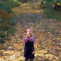 A young girl enjoys fall on an old logging road on the northern slopes of Rice Hill in Vermont's Green Mountains.  Wardsboro, VT