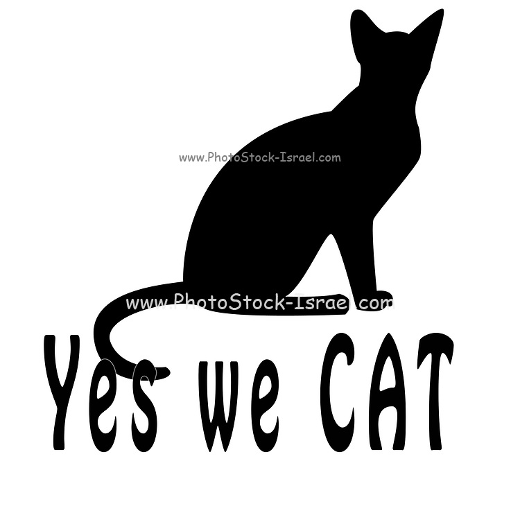 Digitally enhanced image of the humourous text Yes We CAT