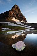 Reflection on a pond near Hidden Lake, Glacier National Park.