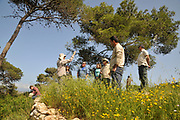 Scientists on a field trip in an attempt to study and prevent the next forest fire. Photographed in the Carmel mountain pine tree forest