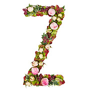 Capital Letter Z Part of a set of letters, Numbers and symbols of the Alphabet made with flowers, branches and leaves on white background