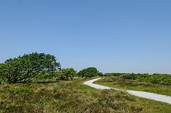 Zwanenwater, Callantsoog, Noord Holland, Netherlands