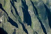Kalalau Valley cliffs seen from Pihea Trail, Na Pali Coast, Kauai, Hawaii, USA. The potholed Pihea Trail traverses a spectacular cliff edge of Na Pali-Kona Forest Reserve, overlooking the Kalalau Valley in Na Pali Coast State Park down to the Pacific Ocean, a breathtaking 4000 feet below, on the island of Kauai. Slippery wet clay makes this a challenging hike of 2.6 miles round trip with 500 feet gain to Pihea Peak. (Optionally continue past Pihea Peak to Alaka'i Swamp Trail.) Pihea Trail begins at Pu'u O Kila Lookout at the end of the road in Koke'e State Park.