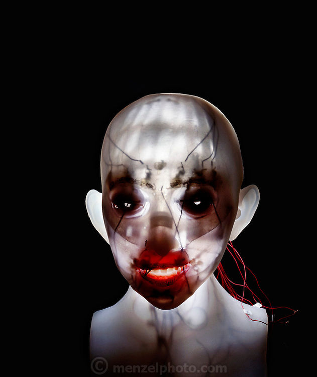 First generation face robot from the Hara-Kobayashi Lab in Tokyo. Lit from behind to reveal the machinery beneath the skin. The machinery will change the contours of the robot's skin to create facial expressions. It does this by using electric actuators, which change their shape when an electric current is passed through them. The devices will return to their original shape when the current stops. This robot face was developed at the Laboratory of Fumio Hara and Hiroshi Kobayashi at the Science University, Tokyo, Japan.