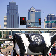 An oversized dairy cow, part of a parade entry from Hiland Dairy Foods, moved past the Kansas City skyline in Monday's Labor Day Parade at Main Street and Pershing Road. The parade ended at Penn Valley Park with a cookout and entertainment.