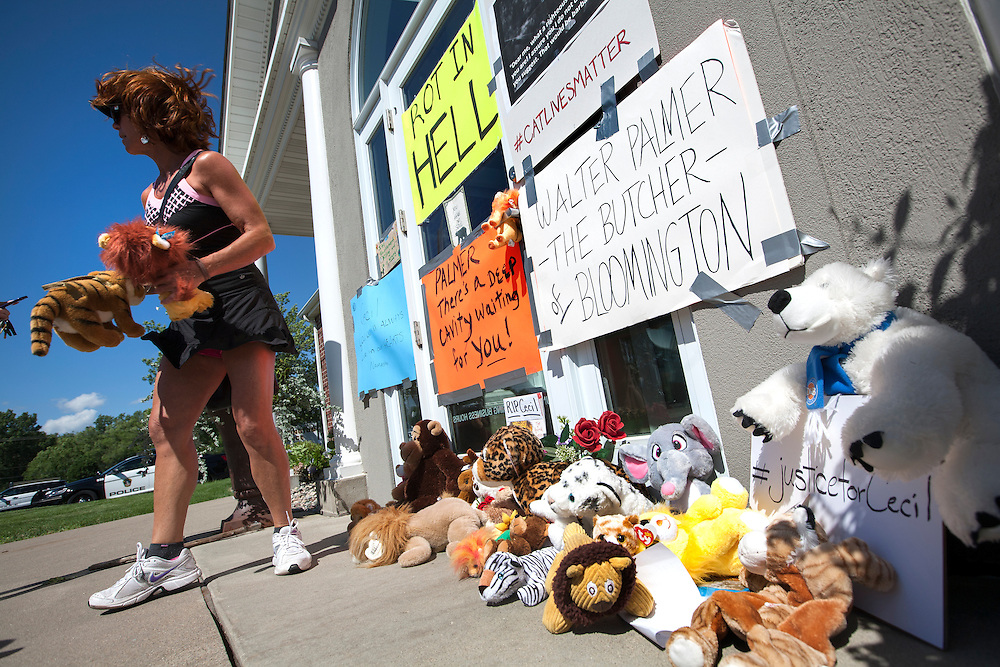 """Heidi Ziman of Golden Valley moves some stuffed animals that were left with signs at the dental office of lion hunter Walter James Palmer in Bloomington, MN, July 29, 2015. Ziman taped her own sign to the door which read """"PALMER, there's a deep cavity waiting for YOU!"""""""