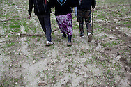 Syrian refugees that have just crossed into Turkey from Idlib province in Syria's north west. They walk towards a Turkish village and head for the Kilis refugee camp. 24/11/2012