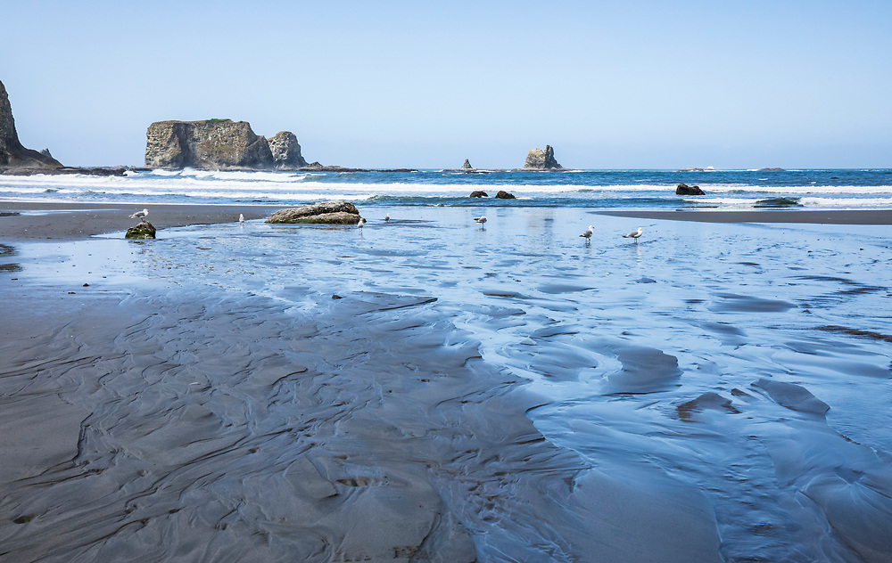Low tide on a clear day at 2nd Beach, Olympic National Park Coastal Preserve, Washington, USA.