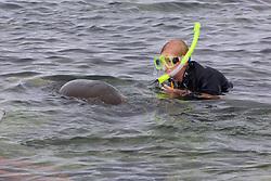 Rachel Streich Snorkeling Next To Galápagos Sea Lion, San Cristóbal
