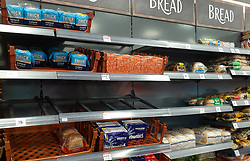 © Licensed to London News Pictures. 14/10/2021. London, UK. Nearly empty shelves of fresh bread in Iceland, north London just after 10am. This is amid fears of food shortages leading up to Christmas, due to labour shortages, following Brexit. Photo credit: Dinendra Haria/LNP
