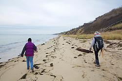 Judith Rhome & Geneviève Martin, Looking For Stranded Sea Turtles On Beach Survey