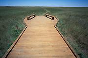wooden platform on wild grass