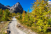 The Larch Valley Trail to Sentinel Pass, Banff National Park, Alberta, Canada