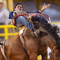 Ed Miles Harvey puts in a 74-point ride in the bareback competition of the Navajo Nation Fair in Window Rock Thursday.