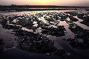 The polluted Ganges River in Kanpur, Uttar Pradesh, is seen at dawn from its banks, bordering the large tannery area of Jajmao. Sustaining life for thousands of years along the Indo-Gangetic plains, the river's ecosystem is in grave danger of being damaged beyond repair.